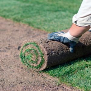 ladscape-installation-grass